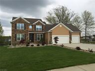 31 Woodland Run Canfield OH, 44406
