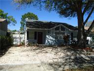 12311 Witheridge Dr Tampa FL, 33624