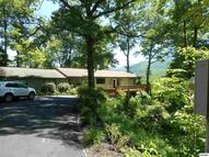 210 Hollow Rd. Cosby TN, 37722