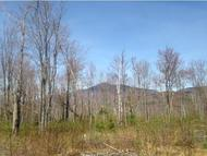Lot 1 County Rd Lincoln VT, 05443