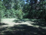 Lot 11 250 Ave Old Town FL, 32680