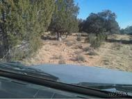 Lot 745 West Off Pumphouse Rd Seligman AZ, 86337