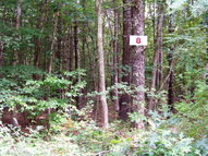 Lot 8 Pine Grove Estates Lerona WV, 25971