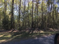 Lot24 Pine Bluff Road Chatham LA, 71226