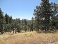 3389 Bald Mountain Rd. West Point CA, 95255