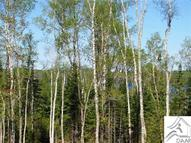1xx Two Mile Rd Approx 9 Miles From Hwy 61 Up Caribou Trail Lutsen MN, 55612
