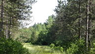 40.44 Ac Smiley Road Amberg WI, 54102