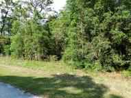 00 Se 194 Court Lot Morriston FL, 32668