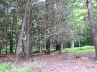 Lot #22 Steep Hill Rd Beach Lake PA, 18405