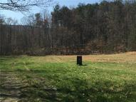 31.4 Rock House Road 31.4 Ac Westfield NC, 27053