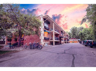 233 N Meldrum St #A4 Fort Collins CO, 80521