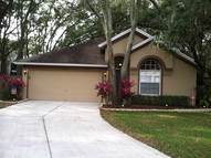 4625 Hidden Shadow Drive Tampa FL, 33614