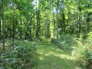 Lot A Drew Road Empire MI, 49630