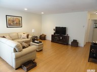 38 Richmond Blvd 3b Ronkonkoma NY, 11779