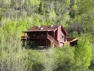 200 Serpentine Trail Marble CO, 81623
