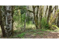 250 E Evergreen Rd Belfair WA, 98528