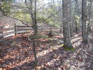 Lot 108 Other Gap Mills WV, 24941