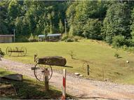139 Spruce Flats Road Lot#40 & 25 Maggie Valley NC, 28751