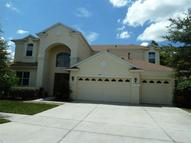 3003 Marble Crest Drive Land O Lakes FL, 34638
