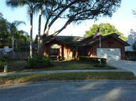 1917 Spanish Oaks Drive N Palm Harbor FL, 34683