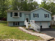 267 Snow Valley Drive Drums PA, 18222