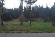 Lot 2 Labrador Meadows None Trinity Center CA, 96091