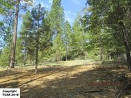 19.56 Ac Off Fiske Hill Coulterville CA, 95311