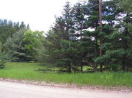 0 W Birch Road Parcels B,C,D And E Higgins Lake MI, 48627