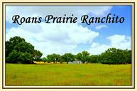 10160 Highway 90 North Roans Prairie TX, 77875