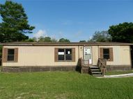 8299 Yellow Pine Ave Brooksville FL, 34613