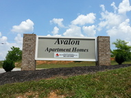 411 Avalon Drive Louisville TN, 37777