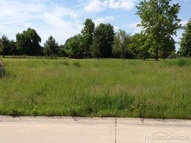 0 Swan Ct  Lot 11 Fair Haven MI, 48023