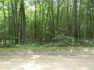 Lot 14 Green St Higgins Lake MI, 48627