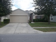 787 Sea Holly Drive Brooksville FL, 34604