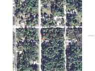 1481 9th Avenue Deland FL, 32724