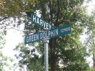 0 Green Dolphine Houston TX, 77013