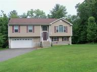 10 Deer Ln Montague NJ, 07827