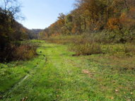 625.67 Ac. Pine Lick Road Whitleyville TN, 38588