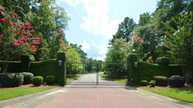 Lot 63 Sorrell Red Court Warrenville SC, 29851