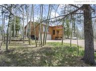 223 Worley Road Divide CO, 80814