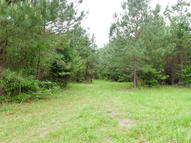 Cr 180 (34.28 Ac) Blue Springs MS, 38828