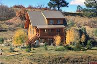 167 Saddleback Pagosa Springs CO, 81147