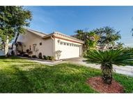 1701 Arabian Ln Palm Harbor FL, 34685