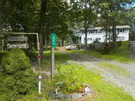 804 Harness Ct Lords Valley PA, 18428