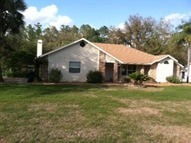 29341 Downy Place Wesley Chapel FL, 33545