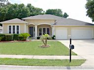 1202 Weeping Willow Dr. Deland FL, 32724