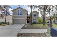 2321 Lyncrest Court Valrico FL, 33596