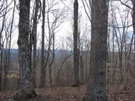 13+ Acres Eagle Ridge Sneedville TN, 37869