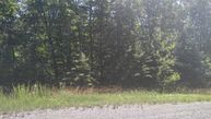 0 Forest View Ln Lot25 Dunlap TN, 37327