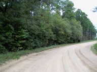 0000 Lakeview Drive Donalsonville GA, 39845